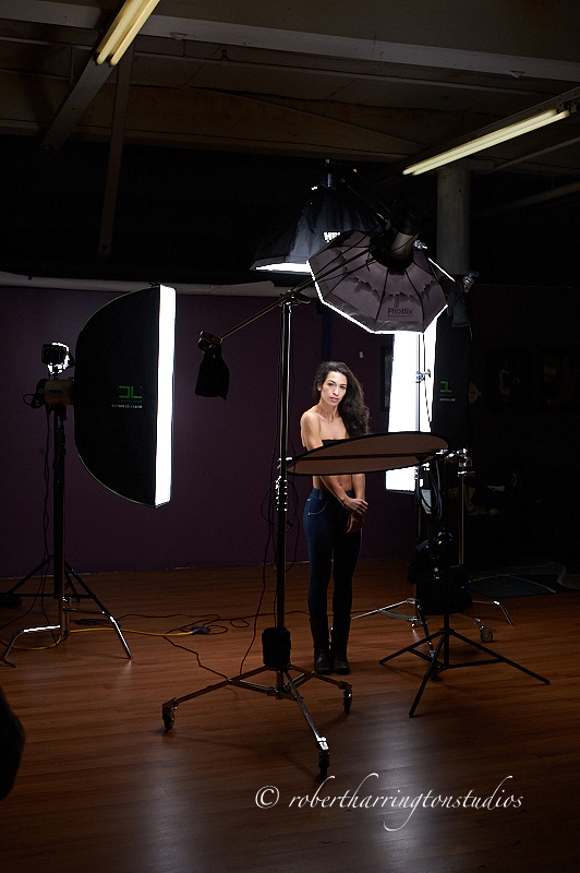 Rogue Portrait Lighting Kit